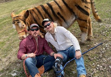 These Farmers Painted Their Cow And Staged A 'Tiger King' Photo Shoot